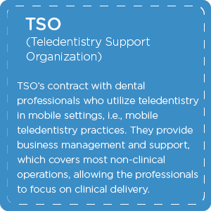 What is a Teledentistry Support Organization TSO